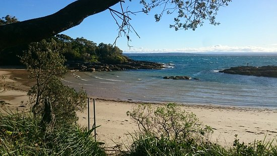 Currarong, ออสเตรเลีย: DSC_1268_large.jpg