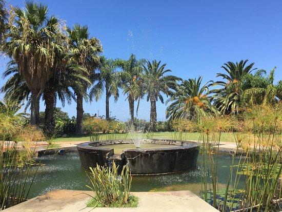 Rosmarino Park