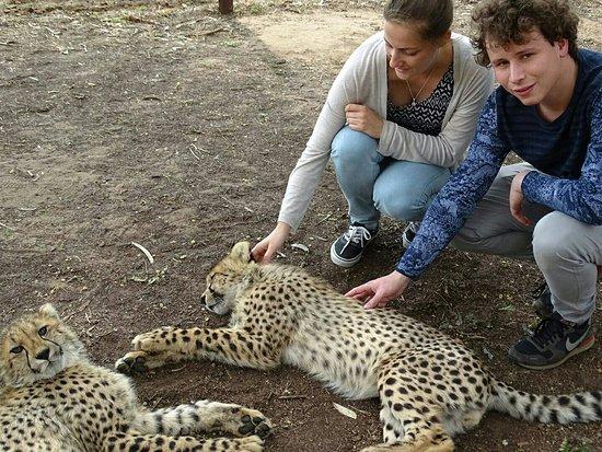 Hluhluwe Game Reserve, Sydafrika: IMG_20160819_122138_large.jpg