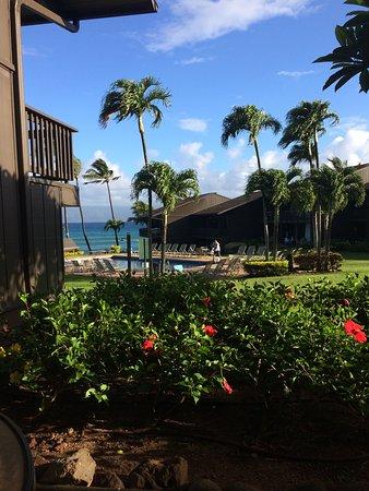 Mahina Surf: Terrasse mit Blick auf den Pool und das Meer