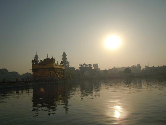 Det gyldne tempelet - Hari Mandir: At sunrise
