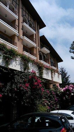 Broummana, Λίβανος: IMG_20160821_120032_large.jpg