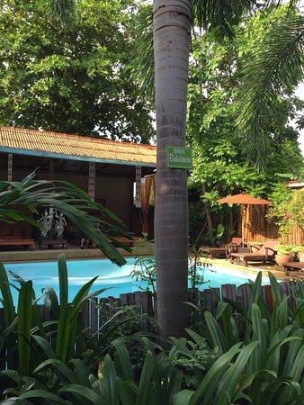 Joy's House Photo