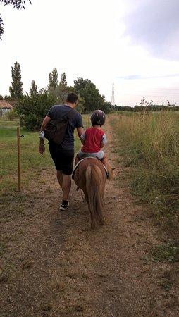 Apartamentos Maeva Club L'Estajan: Balade à poney le long des chamrbes