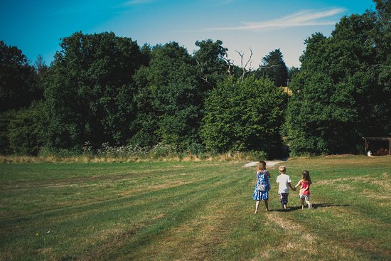 Ottery St. Mary, UK: 3 of our children in the meadow.