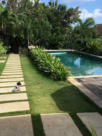Casa Asia: Un pezzo d'Italia nella stupenda cornice di unganasan, Bali