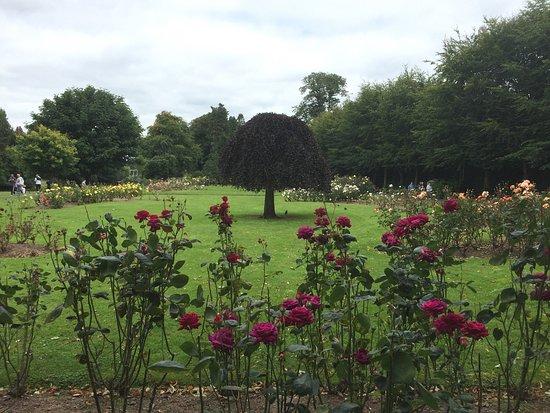 Fitzgerald's Park: photo3.jpg