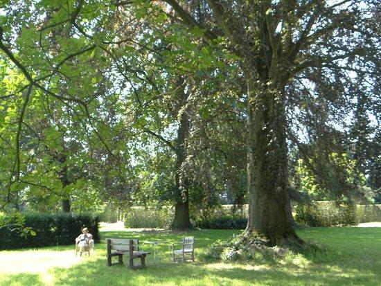 Flemish Brabant Province, Belgia: invite à la détente à l'ombre des grands arbres séculaires