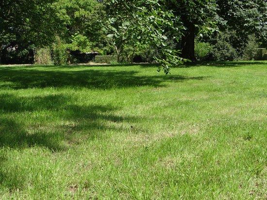 Brabant flamand, Belgique : partie pelouse et grands arbres