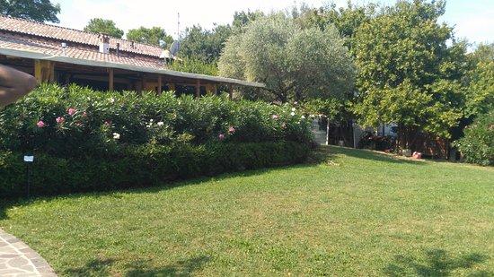 Fattoria La Quercia: giardino