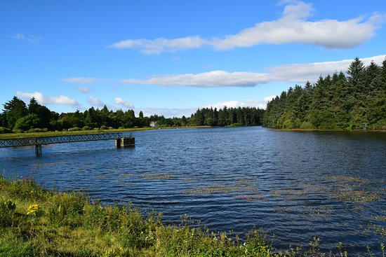Forfar, UK: Crombie water from the dam