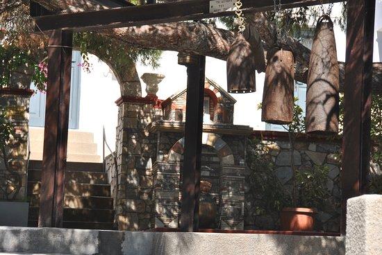 Πόθια, Ελλάδα: The tree of saint Savvas