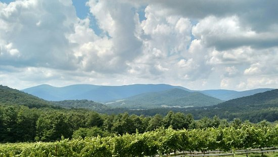 Dyke, VA: Moss Vineyards