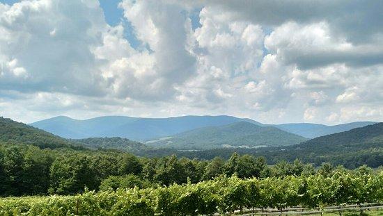Dyke, فيرجينيا: Moss Vineyards