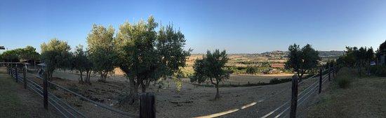 Casale Marittimo, Italia: photo6.jpg