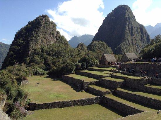 Terrazas De Cultivo Machu Picchu Resmi Tripadvisor