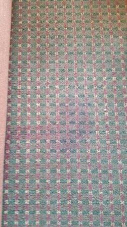 Laurel Crest: disgusting dirty carpet in buildings 5 and 6