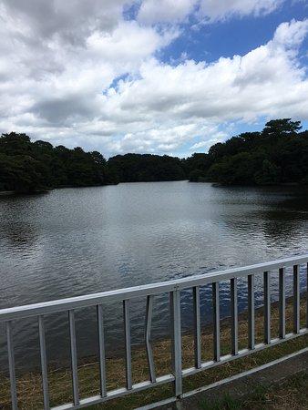 Tokai, Japón: photo0.jpg