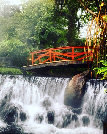 Tabacon Grand Spa Thermal Resort: photo1.jpg
