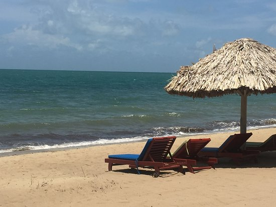 Caribbean Shores Bed & Breakfast: Other resorts' beach chairs