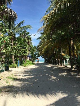 Tribu Hostel: Just around the corner to the beach