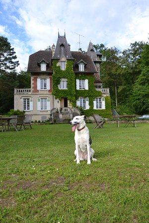 Ermitage de la Fontaine des Roches : Prachtige omgeving en welopgevoede honden van harte welkom !