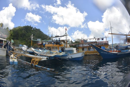 Lembeh Strait: photo9.jpg