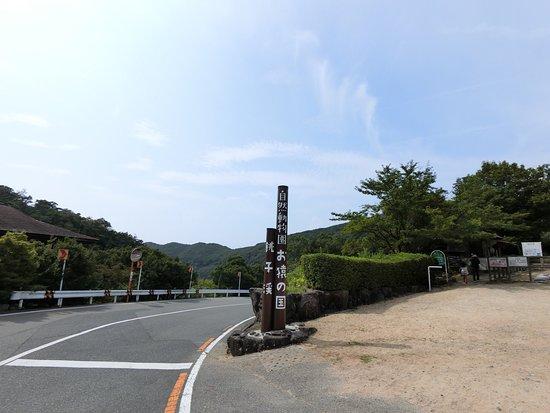 Tonosho-cho, Ιαπωνία: photo4.jpg