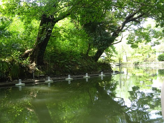 Yanagawa River Boat: 柳川の川下り