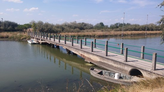 Province of Ravenna, Italy: ponte da attraversare per arrivare al capanno che si trova immerso nel boschetto