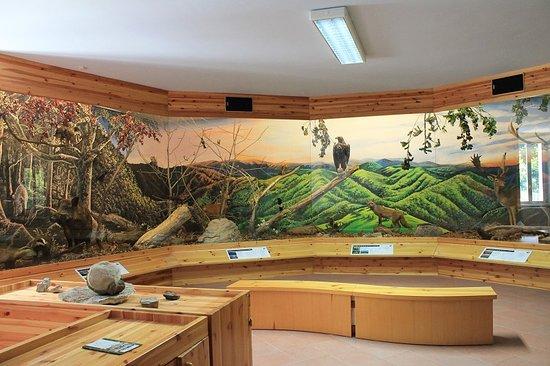 Museo della Fauna del Crinale Romagnolo