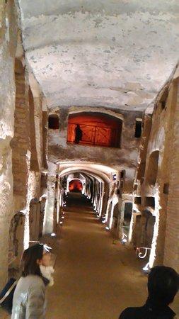 Catacombe di San Gennaro : P_20160220_232035_LL_large.jpg