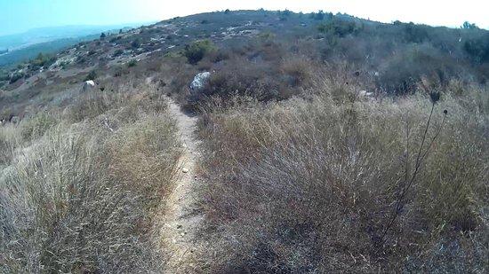 Jesus Trail: Teilweise geht der Weg auch über Trampfelpfade. Diese kann man aber auch abkürzen.