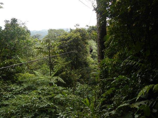 Costa Rica Sky Adventures - Monteverde Park: Tirolesa