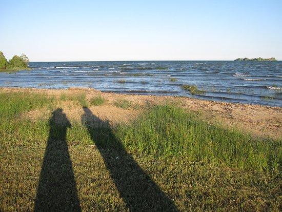 Alpena, MI: Walk along the beach across the road from 40 Winks