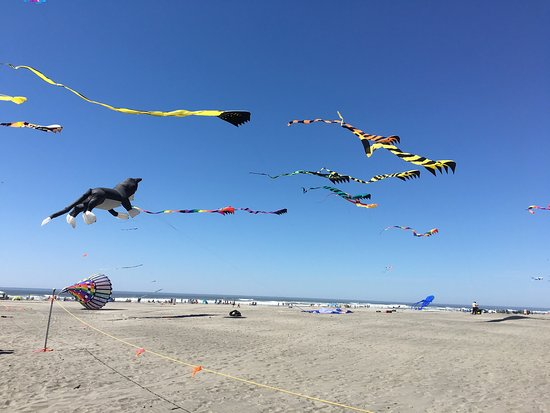 Long Beach, WA: photo2.jpg