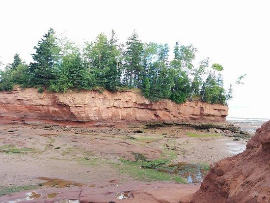 Truro, Kanada: IMG_20160821_094927_large.jpg