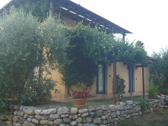 Foto de La Casa DI Gelsomino