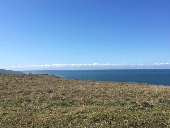 Morgan's Bay, Güney Afrika: photo4.jpg