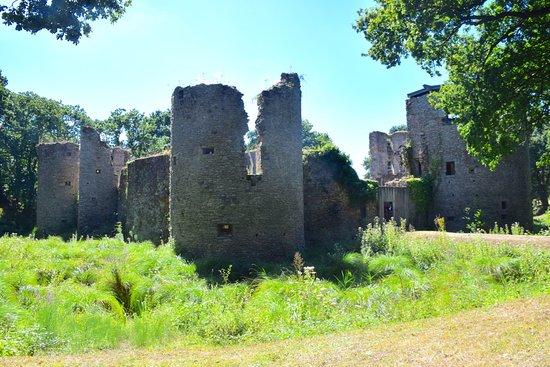 Herbignac, Francja: Vue extérieure du château