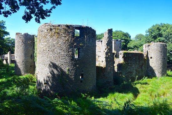 Herbignac, Frankrike: Vue extérieure du château