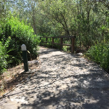 Botanical Garden El Aljibe