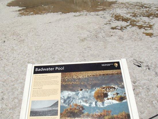 água salgada daí o nome Badwater