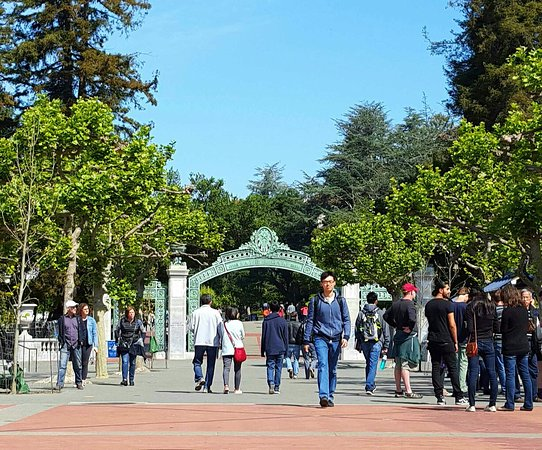 University of California, Berkeley: 20160402_112307-1_large.jpg