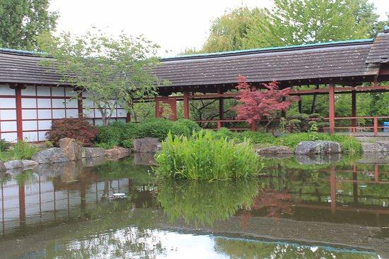 Petit Muse Gratuit Photo De Jardin Japonais Nantes Tripadvisor