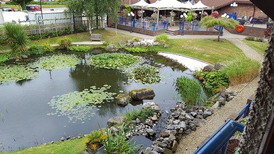 Almondsbury, UK: 20160821_113339_large.jpg