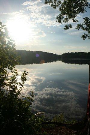 Spotsylvania Foto