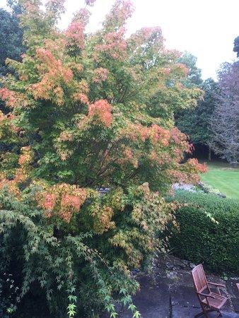 Llandrillo, UK: photo2.jpg