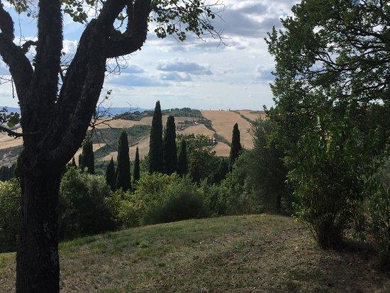 Bettolle, Italië: photo0.jpg