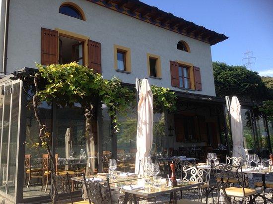 Fattoria/la terrazza esterna - Picture of Fattoria l\'Amorosa ...
